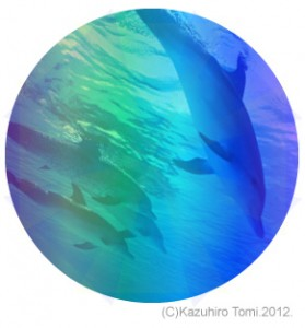 dolphin_dive